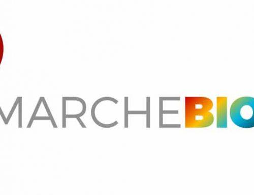 Webinar – Brevetti e innovazione nelle Marche: la situazione attuale e le opportunità di finanziamento 29 ottobre ore 15.00